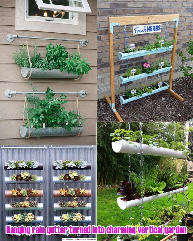 Hanging rain gutter turned into charming vertical garden
