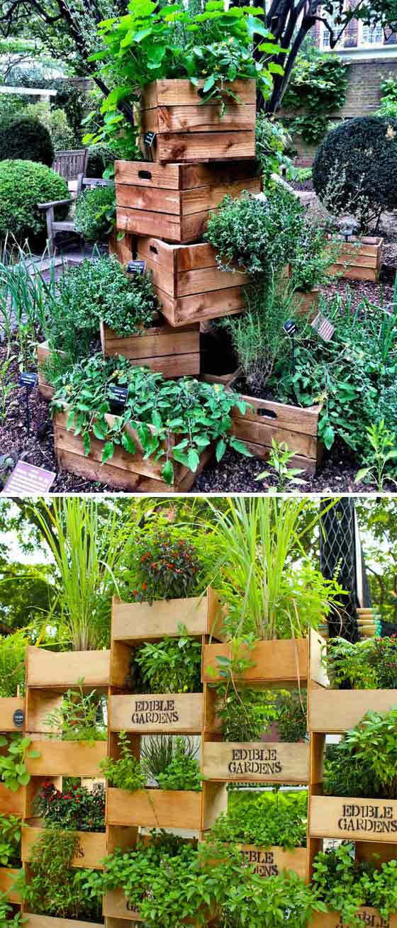 Stacking old boxes to form a vertical garden
