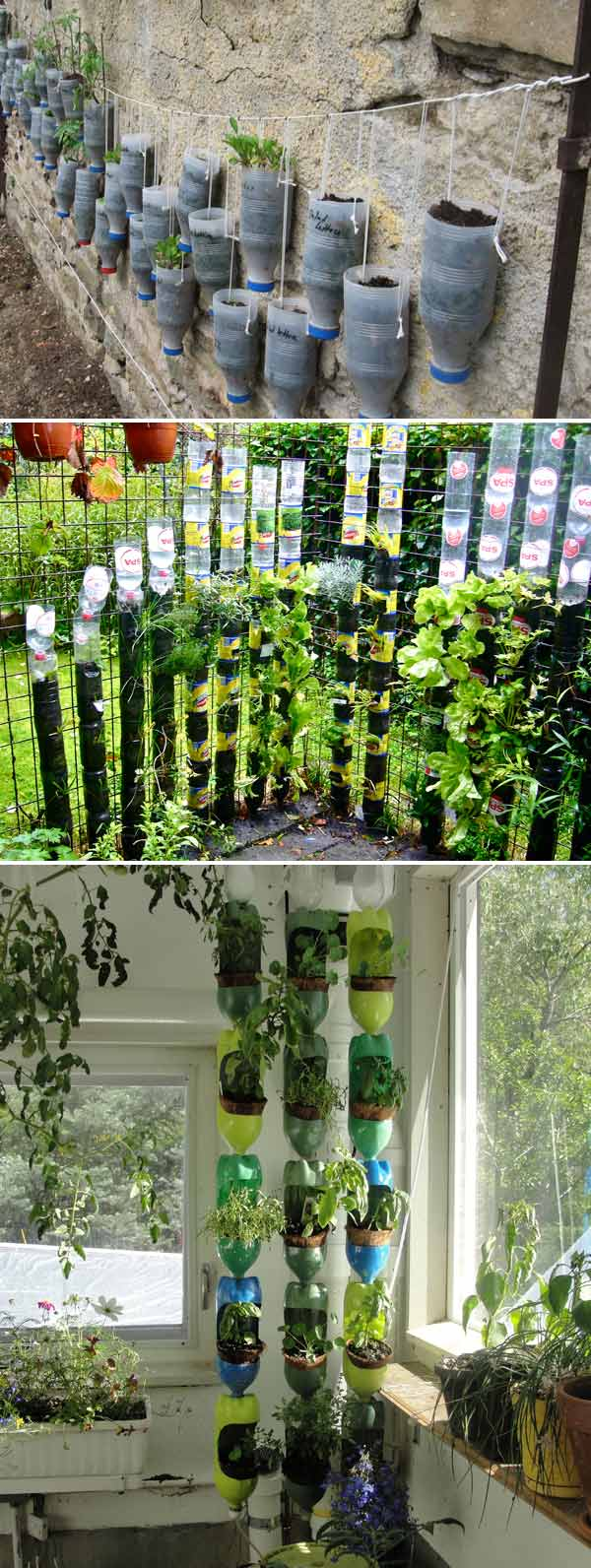 recycled plastic bottles can create surprisingly vertical gardens