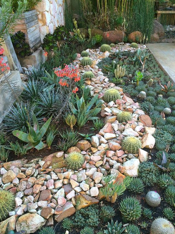 20 Ideas For Creating Amazing Garden Succulent Landscapes Proud