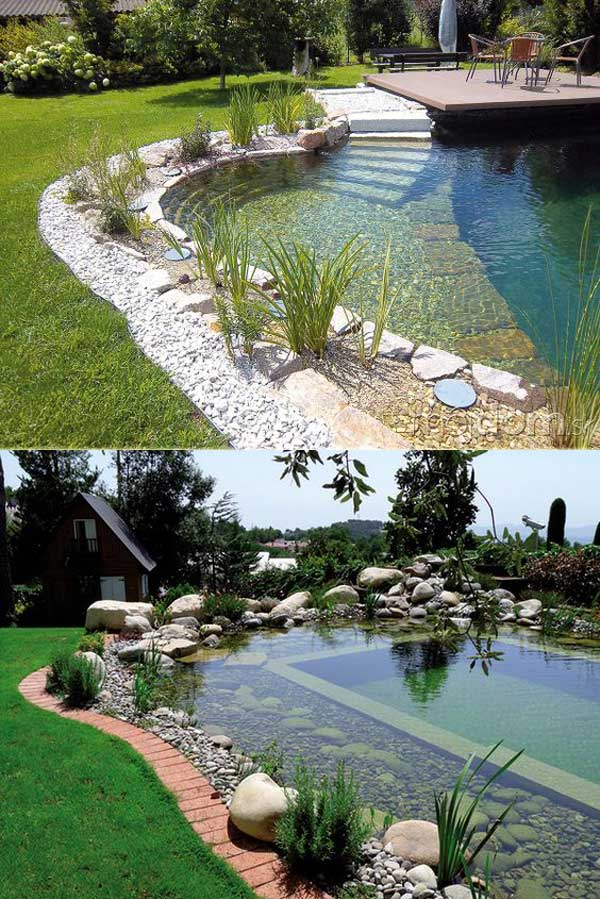 17 Family Natural Swimming Pools You Want To Jump Into