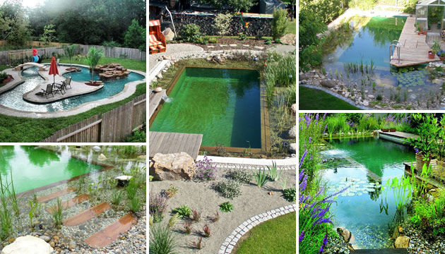17 Family Natural Swimming Pools You Want To Jump Into ...