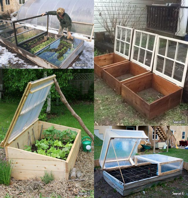 Top 10 Cold Frame Tips For Fall And Winter Veggies