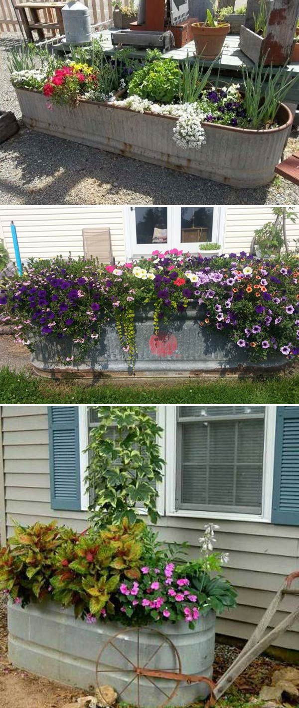 Amazingly Creative Long Planter Ideas for Your Patio ... on Long Patio Ideas id=92098